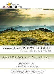 Stage méditation Rhône-Alpes-Loire, 11 et 12 novembre 2017 avec Jean François Richard, Atelier Coloressence