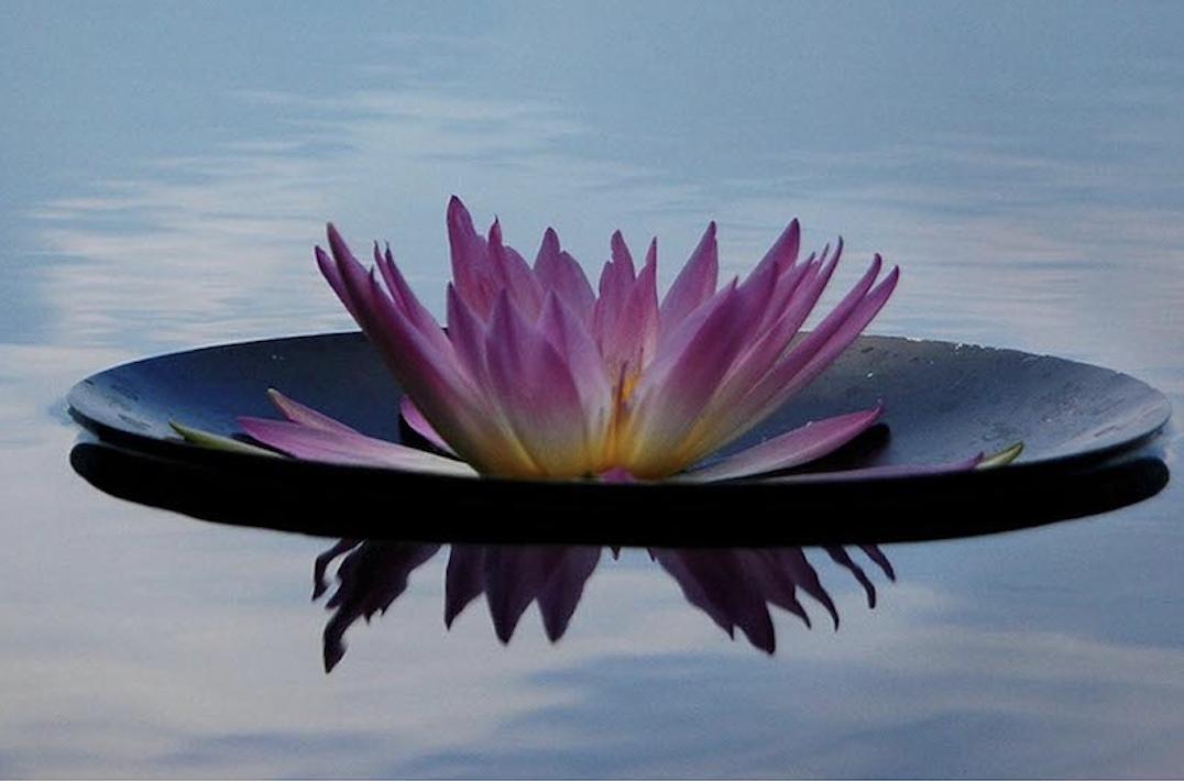 Journée de méditation silencieuse : 22 avril 2017