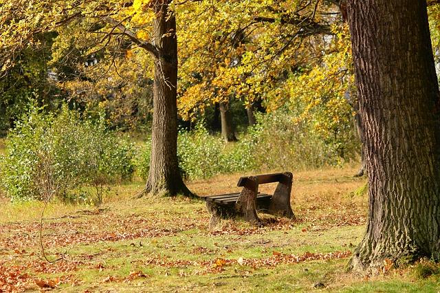 Pourquoi la méditation silencieuse est-elle un atout pour notre quotidien ?
